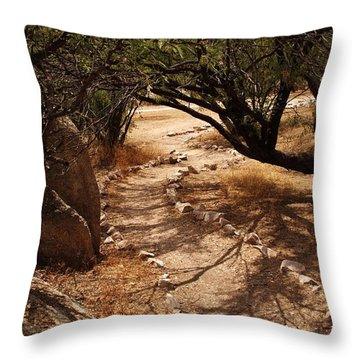 The Path Throw Pillow by Michael McGowan