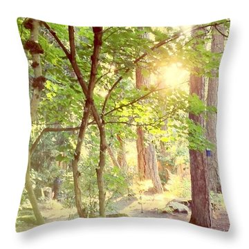 The Path Of Light Throw Pillow