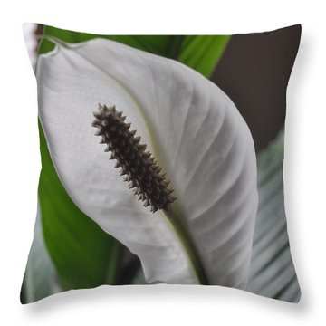 Throw Pillow featuring the photograph The Peace Lily by Verana Stark