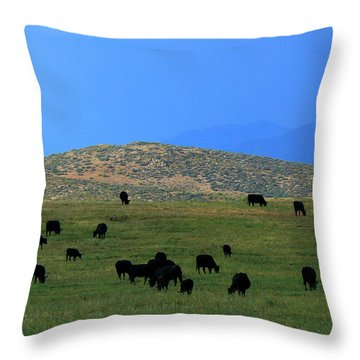 Throw Pillow featuring the photograph The Peaceful Pasture  by Lin Haring