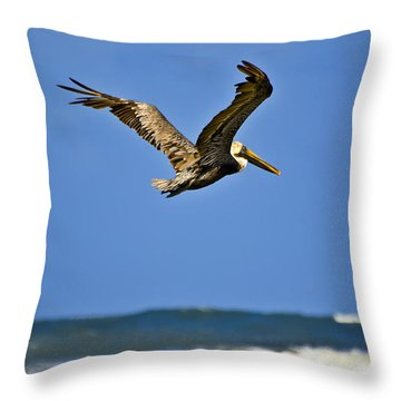 Throw Pillow featuring the photograph The Pelican And The Sea by DigiArt Diaries by Vicky B Fuller