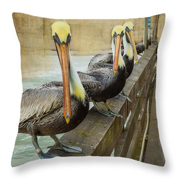 The Pelican Gang Throw Pillow by Steven Reed