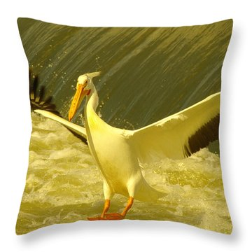 The Pelican Lands Throw Pillow by Jeff Swan