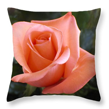 The Perfect Coral Rose Throw Pillow by Kurt Van Wagner