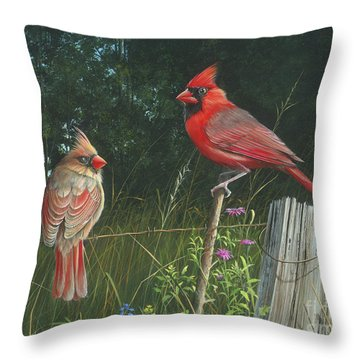 The Perfect Match Throw Pillow