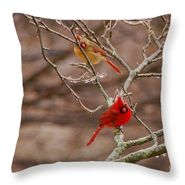 The Perfect Pair Throw Pillow by Mary Carol Story