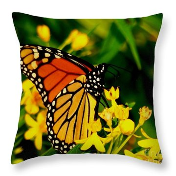 The Perfect Pose Throw Pillow by Leea Baltes
