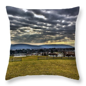 The Perfect View Throw Pillow by Tim Buisman