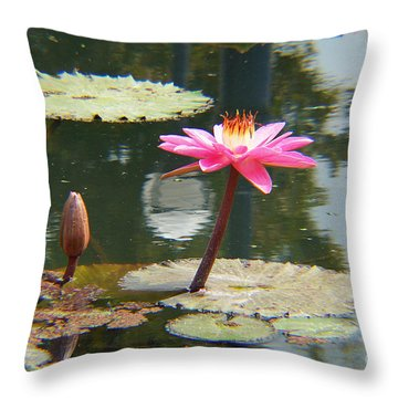 The Pink Water Lily With Lily Pads - One Throw Pillow
