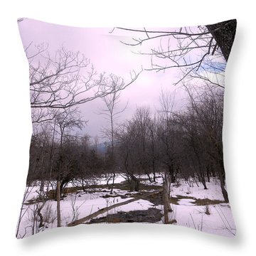 The Pink Winter Light On The Mountain Top Throw Pillow by Patricia Keller