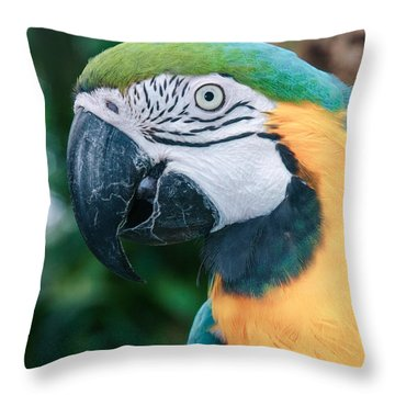 The Poetry Of Nature Throw Pillow by Sharon Mau