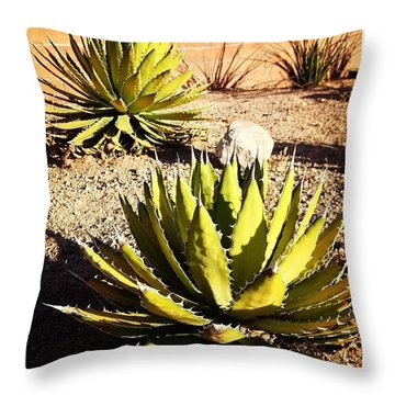 The Point Is...  Throw Pillow