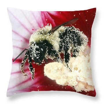 The Pollinator Throw Pillow