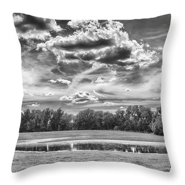 Throw Pillow featuring the photograph The Pond by Howard Salmon
