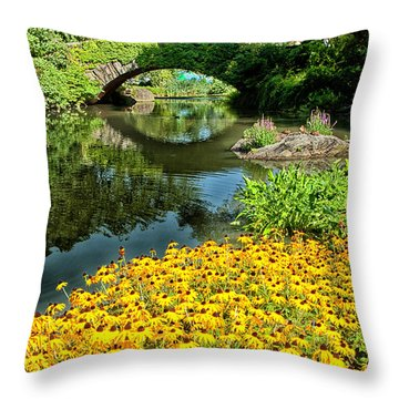 The Pond Throw Pillow by Karol Livote