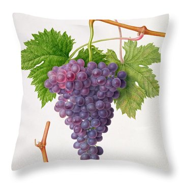 The Poonah Grape Throw Pillow by William Hooker