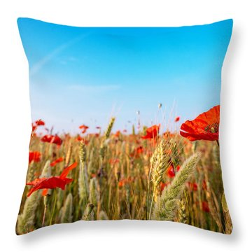 Summer Poetry Throw Pillow