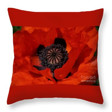 The Poppy Is Also A Flower Throw Pillow