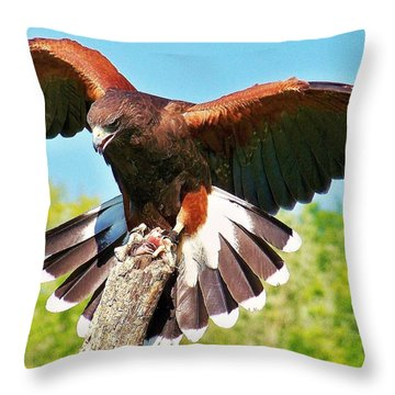 Throw Pillow featuring the photograph The Pose by Al Fritz