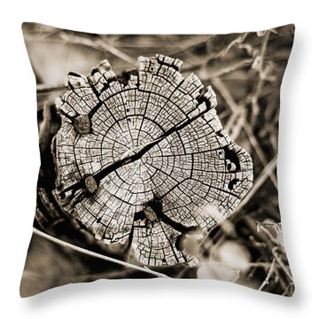Throw Pillow featuring the photograph The Post by Amber Kresge