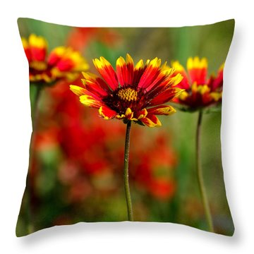 The Power Of Three Throw Pillow