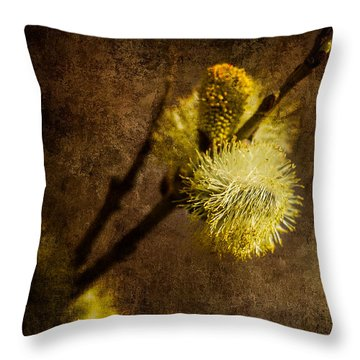 The Prime Of The Year Throw Pillow