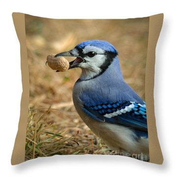 The Prize Throw Pillow