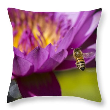 The Promise Of Pollen Throw Pillow by Priya Ghose