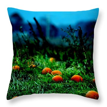 Throw Pillow featuring the photograph The Pumpkin Patch by Lesa Fine