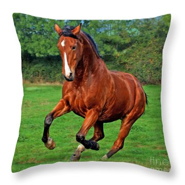 The Pure Power Throw Pillow by Angel  Tarantella