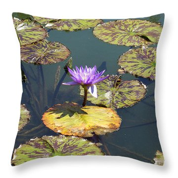 The Purple Water Lily With Lily Pads - Two Throw Pillow