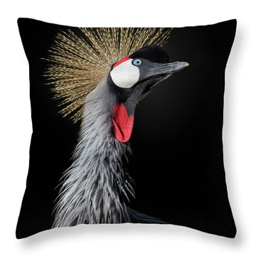Animal Hair Throw Pillows