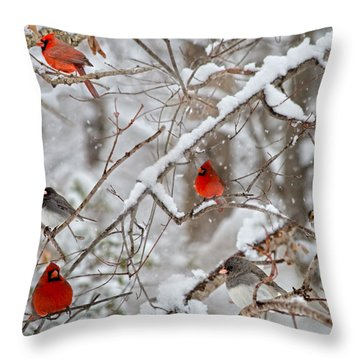 The Quiet Within The Forest Throw Pillow