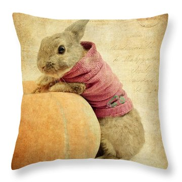 The Rabbit And The Pumpkin Throw Pillow