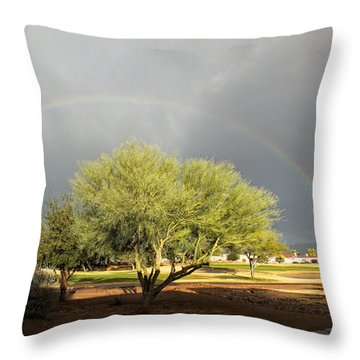 The Rain And The Rainbow Throw Pillow