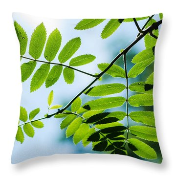 The Rain Has Stopped Throw Pillow by Alexander Senin