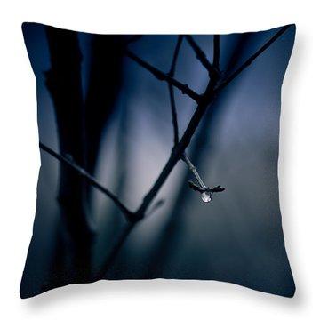 The Rain Song Throw Pillow by Shane Holsclaw