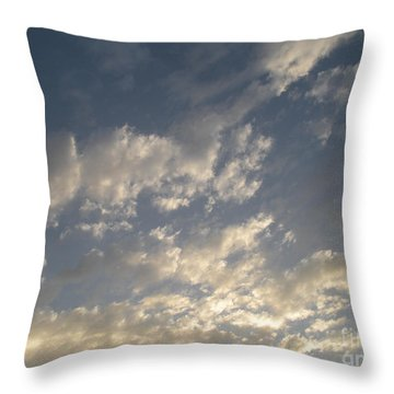 The Rain Storm  Throw Pillow