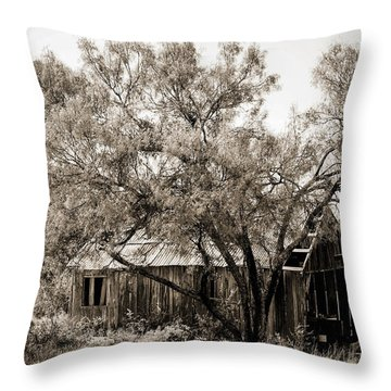 Throw Pillow featuring the photograph The Ranch  by Amber Kresge
