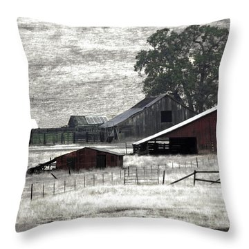Throw Pillow featuring the photograph The Ranch View by William Havle