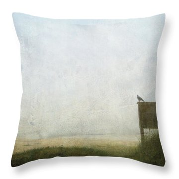 The Raven And The Beach Throw Pillow