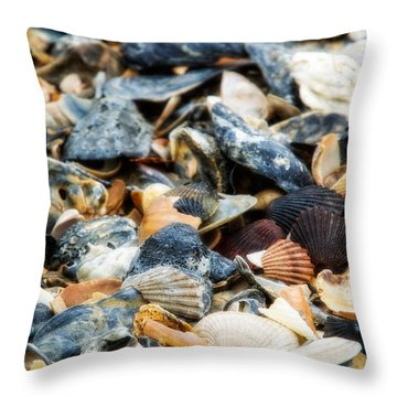 Throw Pillow featuring the photograph The Raw Bar by Joan Davis