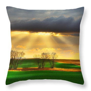 Throw Pillow featuring the photograph The Ray Of Light by Kadek Susanto