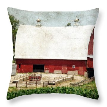 The Red Barn Throw Pillow by Cassie Peters