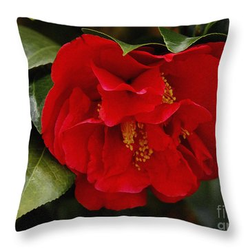 The Red Camellia  Throw Pillow by James C Thomas