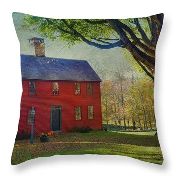 Throw Pillow featuring the photograph The Red House by Barbara Manis