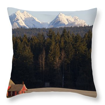 The Red House Throw Pillow