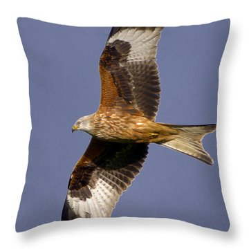 The Red Kite Throw Pillow