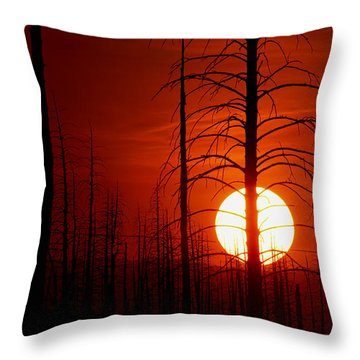 The Red Planet Throw Pillow by Jim Garrison