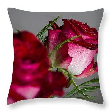The Red Rose Throw Pillow by Andreas Levi